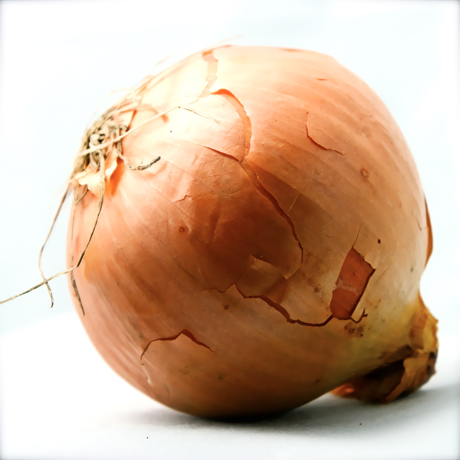 You   re Like An Onion Onion Clipart